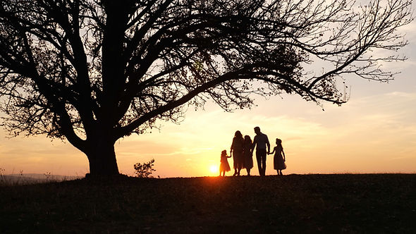 Silhouettes of happy family walking in t