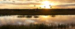 giant orange sun sets behind the bayou o