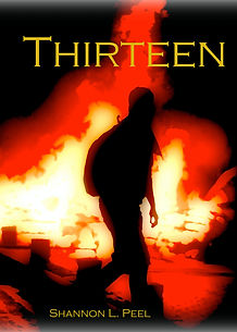 YA novel, book for boys, ebook, kindle, kobo, ereader, action novel, teen book
