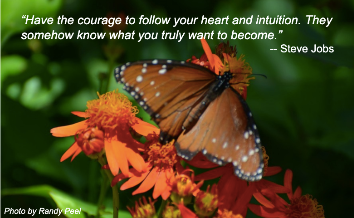 Courage to be