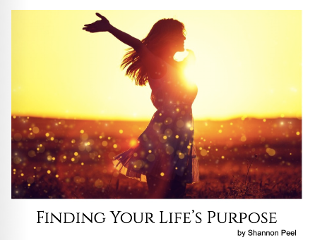 Finding Life's Purpose