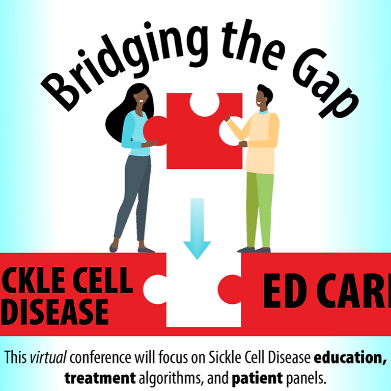 Bridging the Gaps Conference