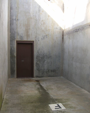 The Istanbul statement on solitary Confinement