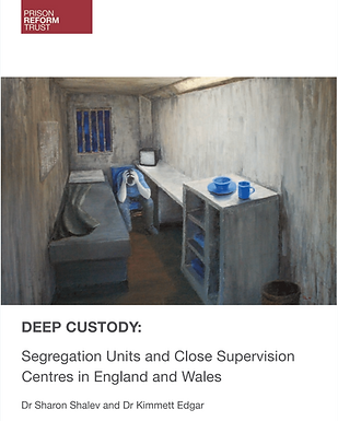 Deep Custody Solitary Confinement