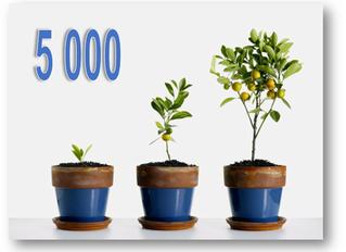5 000 visites sur le blog sb astuces