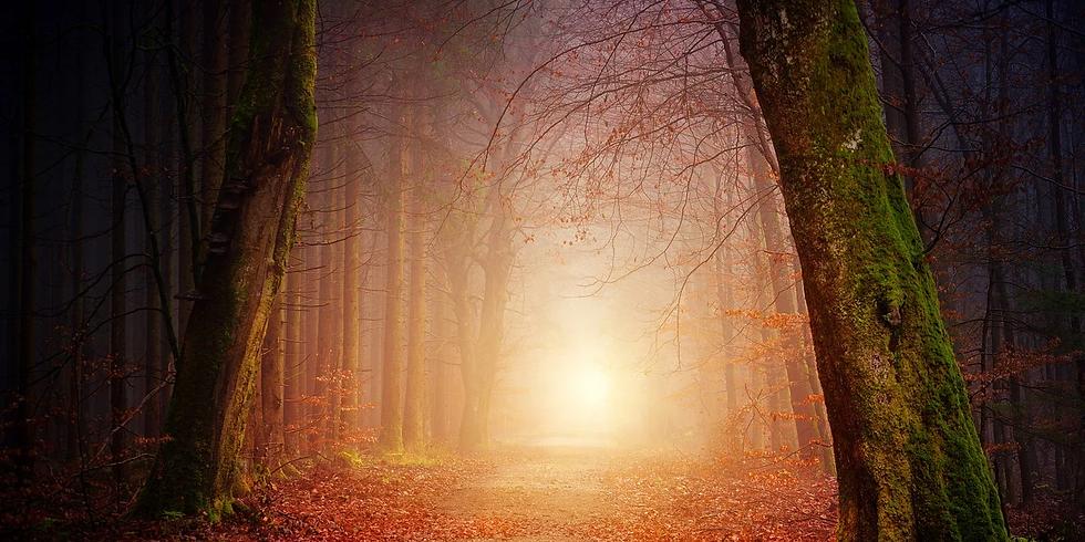 Geleide meditatie ''naar binnen keren''
