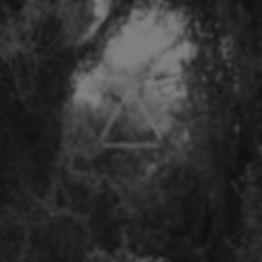 bosque gris