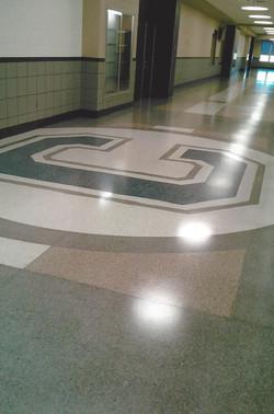 Carey School