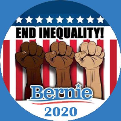 End Inequality - Bernie 2020 (204a)
