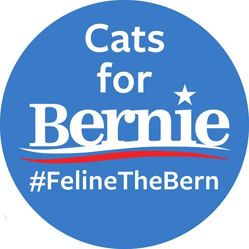 Cats for Bernie (214c)