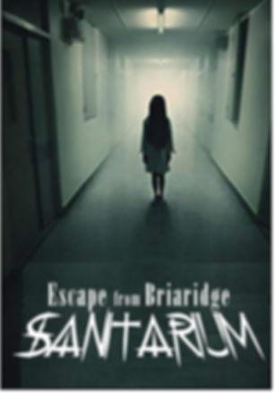 sanitarium logo