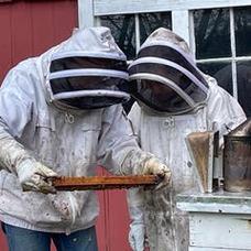 BEE KEEPING WITH BOB