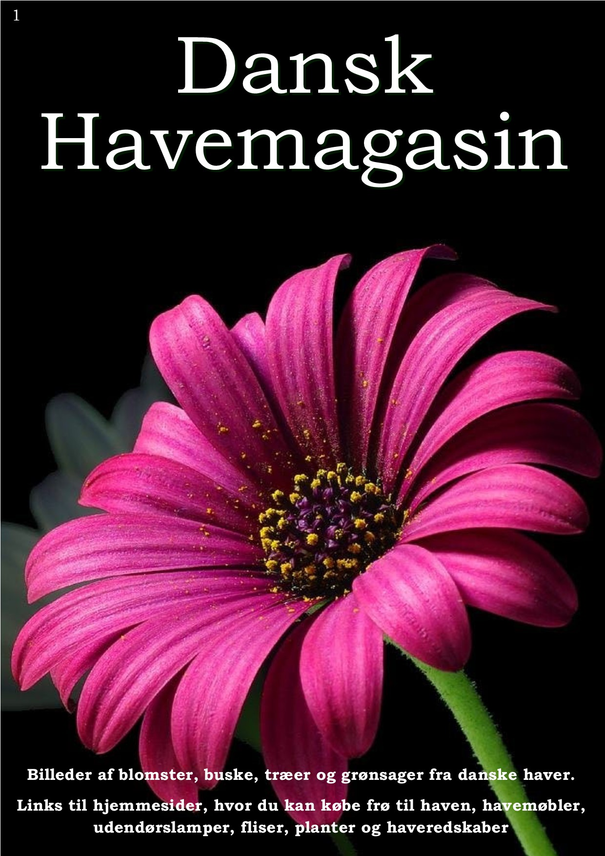 Dansk Havemagasin