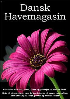 Dansk Havemagasin 1-forside.jpg