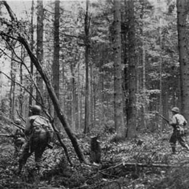 Battle of Hurtegan Forest