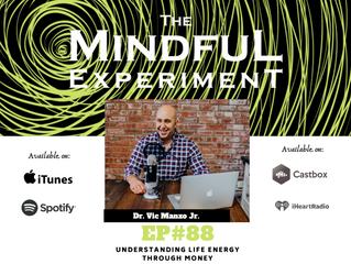 EP#88 - Understanding Life Energy Through Money