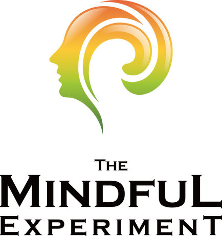 The Mindful Experiment Podcast - Dr. Vic Manzo Jr - Mindset Trainer