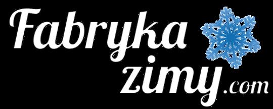 logo_duże.png