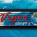Vigor Sport