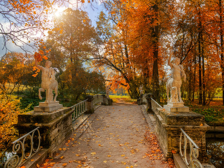 Autumn in Saint Petersburg