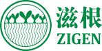 zigen logo.png