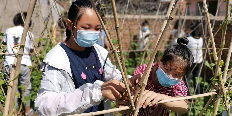 Zigen in Rural China During the Year of the Pandemic Conference