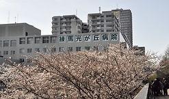 光が丘病院桜].jpg