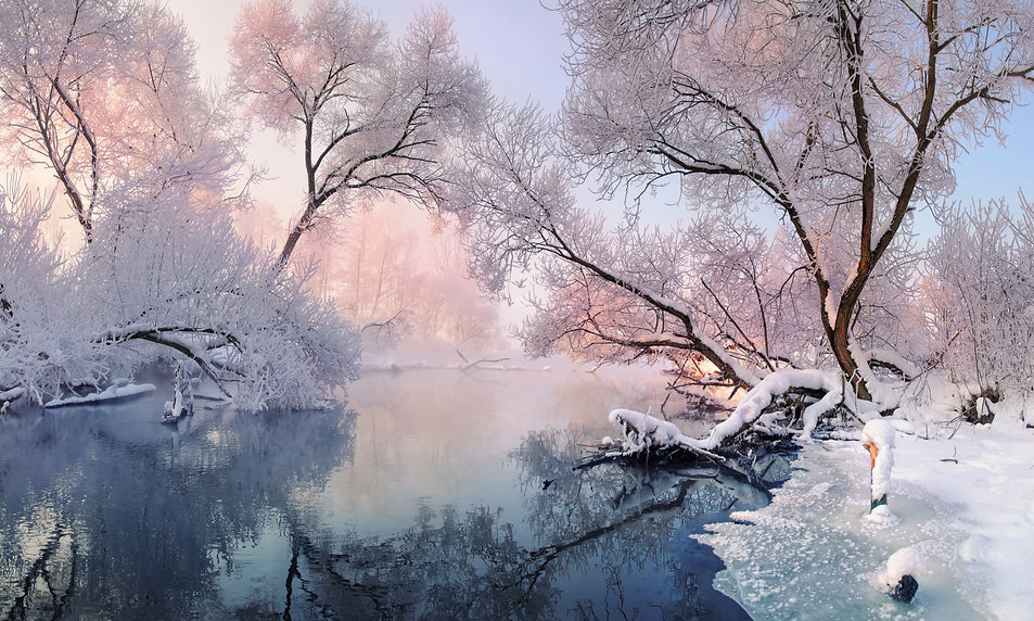 Winter Christmas Landscape In Pink Tones