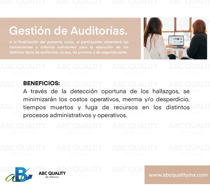 Gestión de Auditorías.jpg