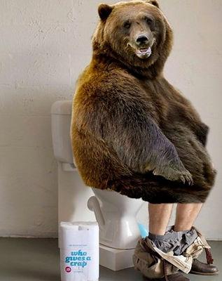 Bear on Toilet.jpg
