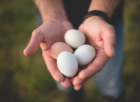 Why You Should Spend $6.50 on a Dozen Eggs