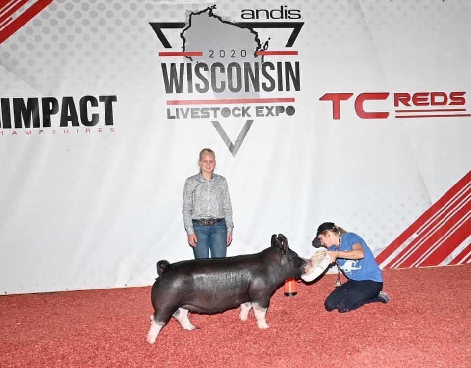 Reserve Berk Gilt Wisconsin Livestock Expo Shown by Cate Cherney Sired by: Gorilla Monsoon Bred by: Schmaling Brothers Berkshire