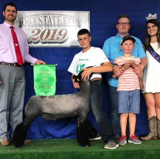 4th Overall Market Lamb Reserve Division