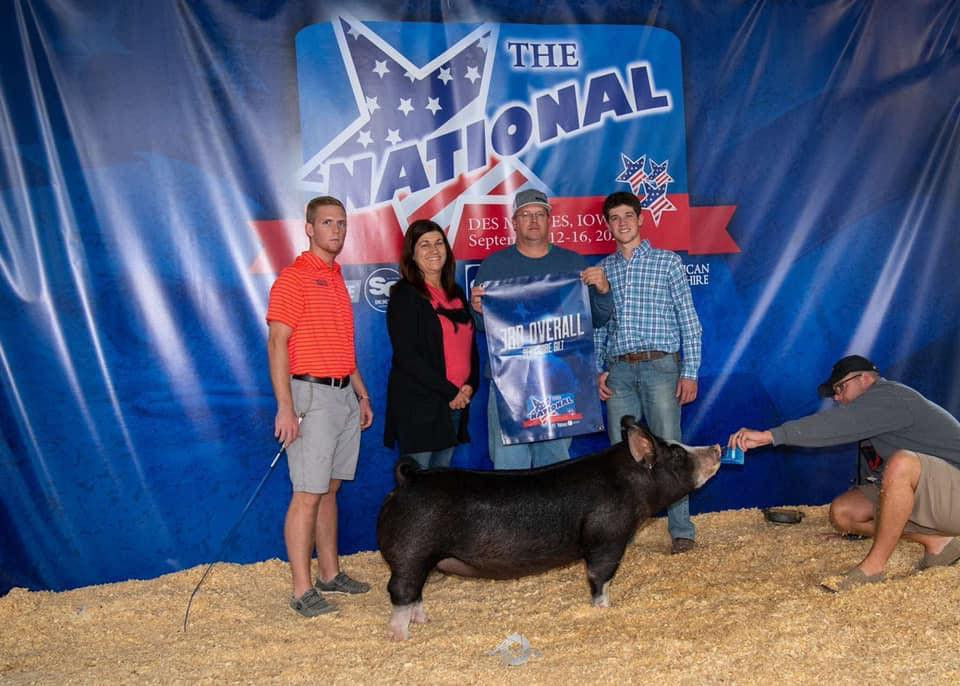 3rd Overall Berkshire Gilt Th National Shown by: Evan Wynne Bred by: Schmaling Bros Sired by: Gorilla Monsoon