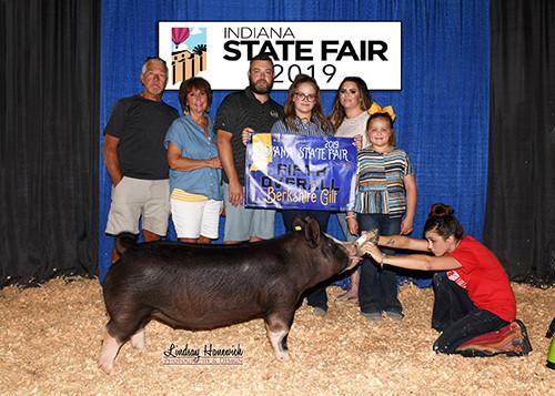5th Overall Berk Gilt 2019 Indiana State Fair Laykn Mauck