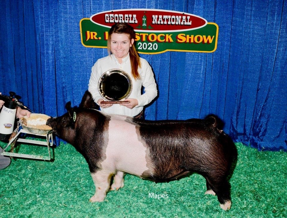 Res. Division Champion Georgia National Grand Champion Gilt Houston Co. GA Shown by: Paige Pascal  Sired by: Dirty Love'n