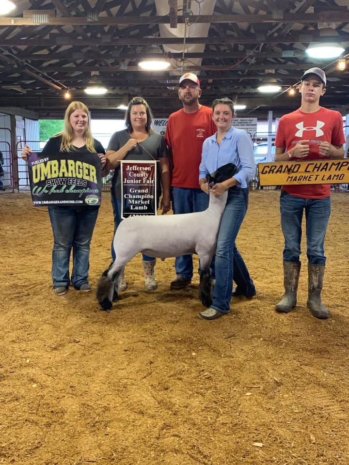 Grand Champion Market Lamb 2019 Jefferson County Fair Shown by: Harleigh Schaffer