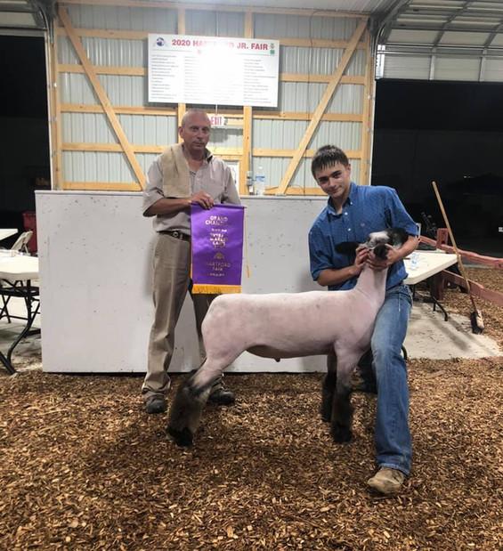 Grand Champion Market Lamb Hartford Fair  Sired By: Black Betty Shown By: Jarrett Pfister