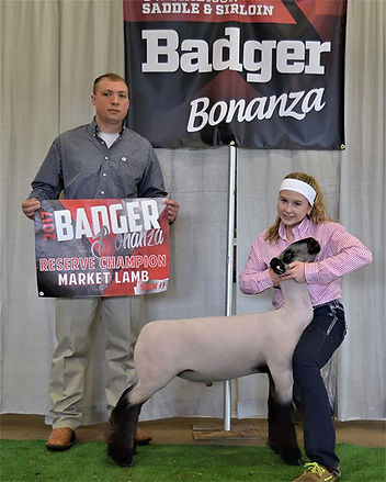 Champion Cross & Reserve Grand - Badger