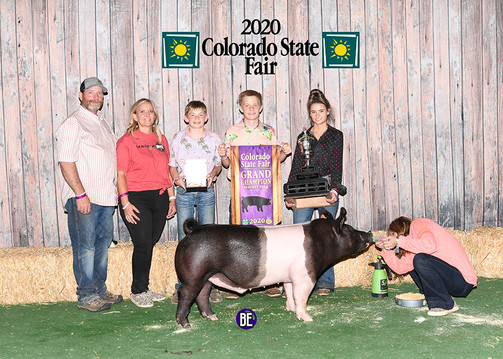 Grand Champion Barrow  Colorado State Fair Tripp Kayser Bred by Mauck