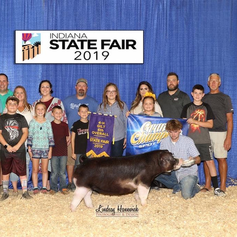6th Overall & Champion Spot Gilt  2019 Indiana State Fair Laykn Mauck