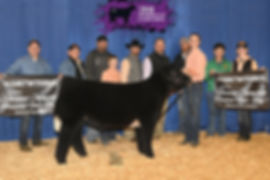 Res Grand Prospect Steer Ring A & B - OK