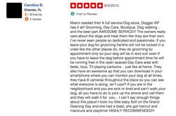 Doggie VIP Miami Reviews