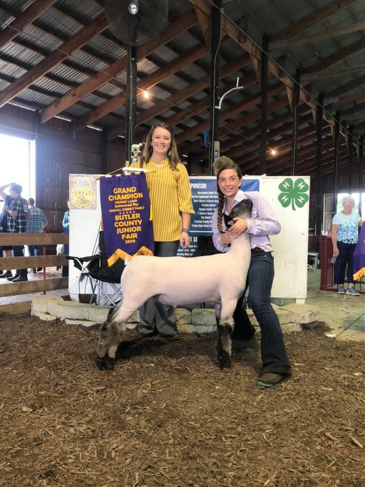 Grand Champion Butler County Fair Jr Show Shown by: Kaylee Huston Placed by: Kristy Pingle & Bailey DeGroat Sired by: Monkey Business