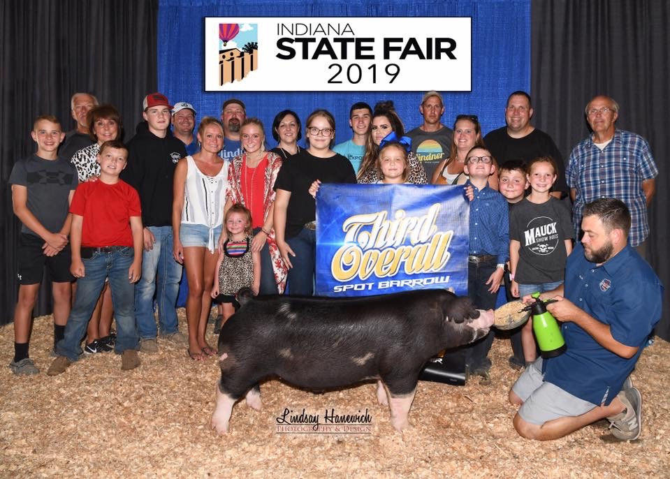 3rd Overall Spot Barrow  2019 Indiana State Fair Laykn Mauck