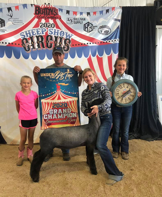 Grand Champion Commercial Ewe  Under the BigTop Jackpot  'Ebony' Emcee x Strictly Business x 3 Way x OTL Shown By: Mariah Cook