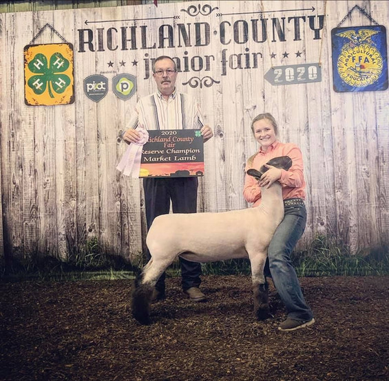 Reserve Grand Champion Market Lamb  Richland County Fair  Sired By: Top Tier  Shown By: Mariah Cook
