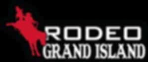 2019 RGI Logo.png