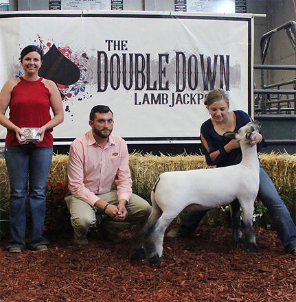 Grand Champion Market Lamb 2017 Double D