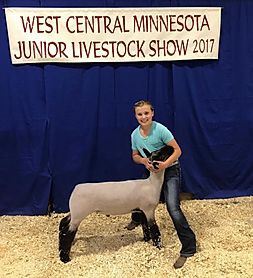 Reserve Grand Champion Market Lamb
